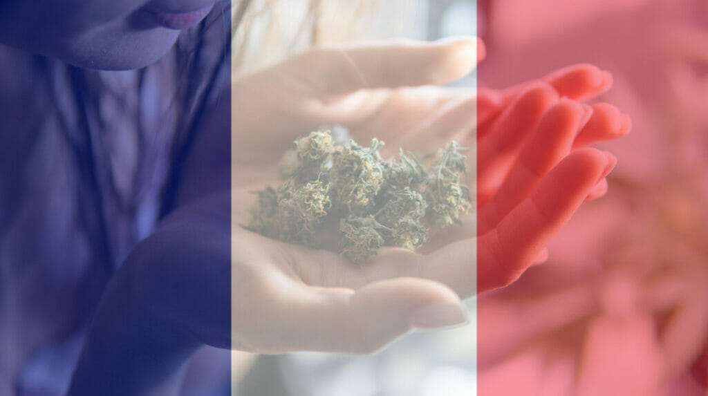 medicinal cannabis use in france for recreational . france cann