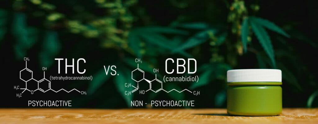 Marijuana CBD Vs THC