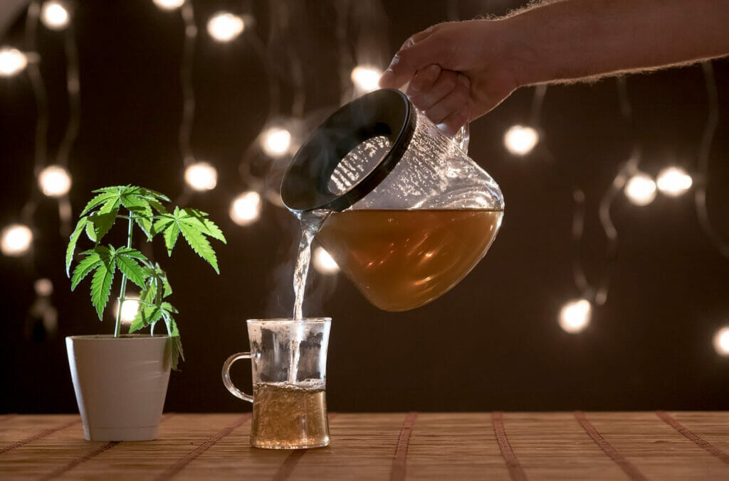 bamboo table with marijuana plant in pottery. hand pouring hot cbd tea in to glass.
